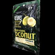 Cebu宿務年輕椰子乾