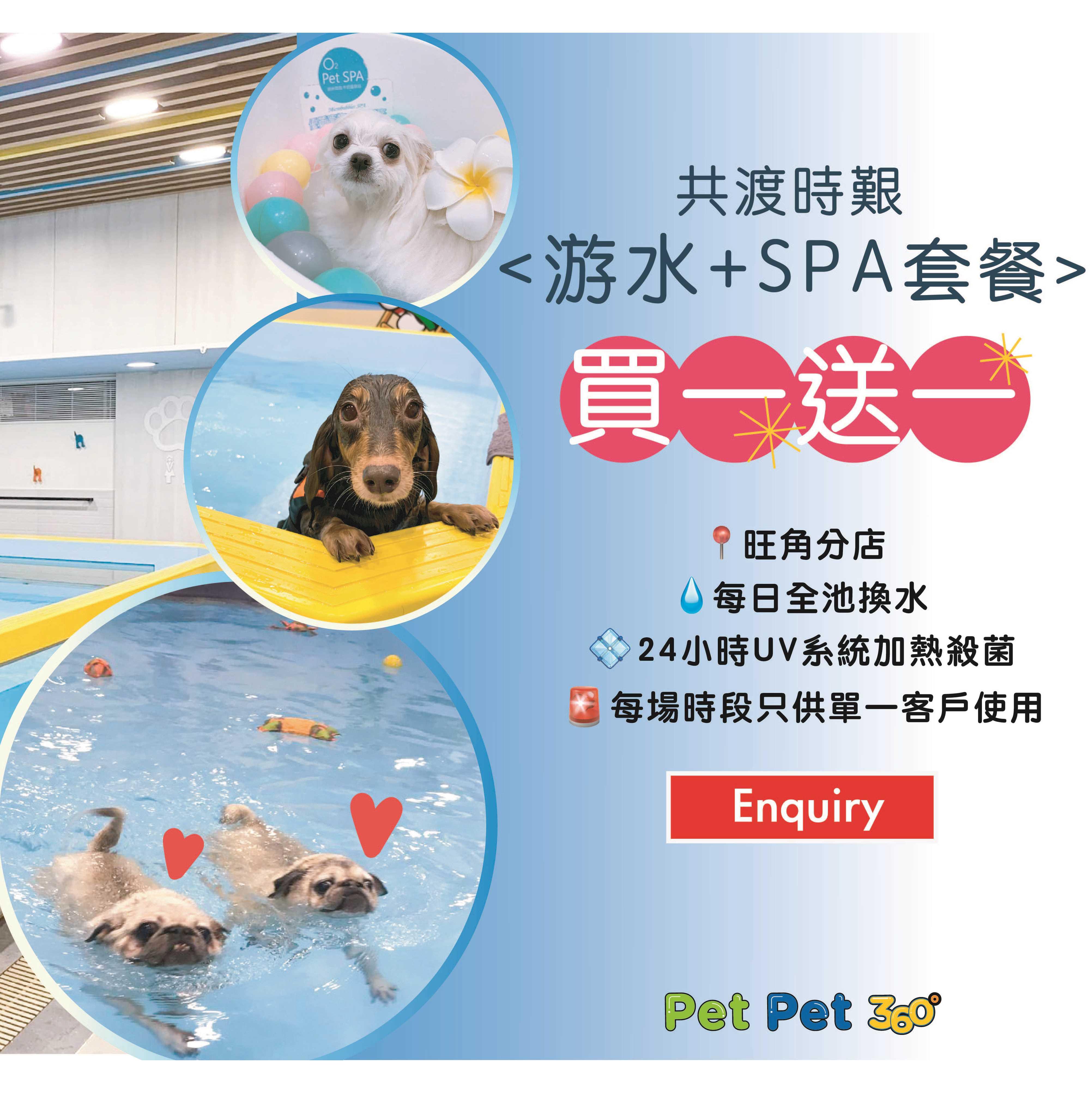 疫情告急,只求唔執笠 『買一送一』游水+ O2 Pet SPA 韓國微泡水療